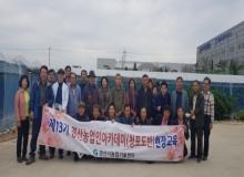 [경산]청포도 샤인머스켓 현장 교육